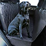 Top 10 Best Dog Car Seat Covers Consumer Report 2019